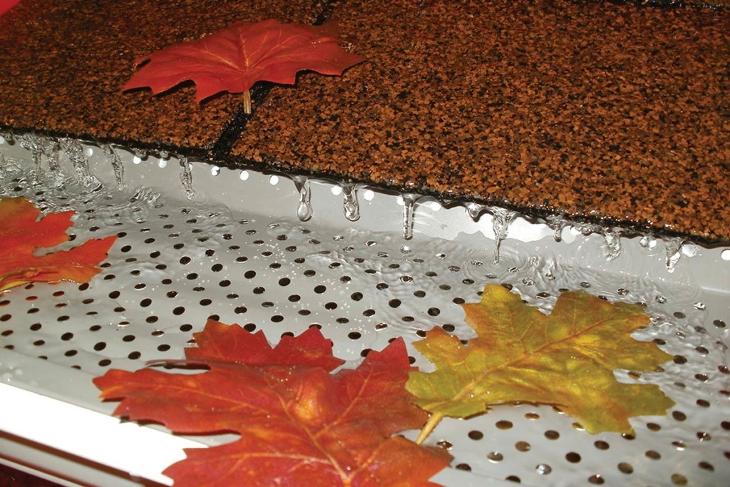 Metal gutter guard with maple leaves inside